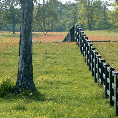 3-Rail Black With Electric Fence