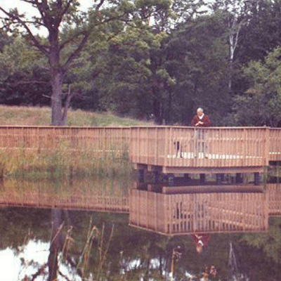 Wetlands Walkway With Observation Deck